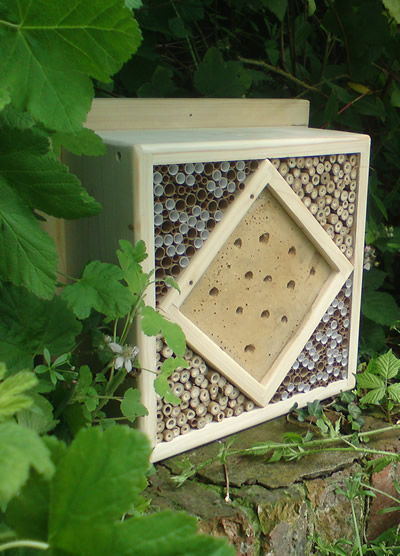 Image of a large rectangular bug box (or hotel) designed to attract insects.