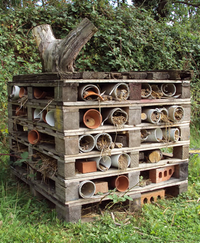 Image of a mini-beast mansion constructed out of pallets, plant pots and bricks