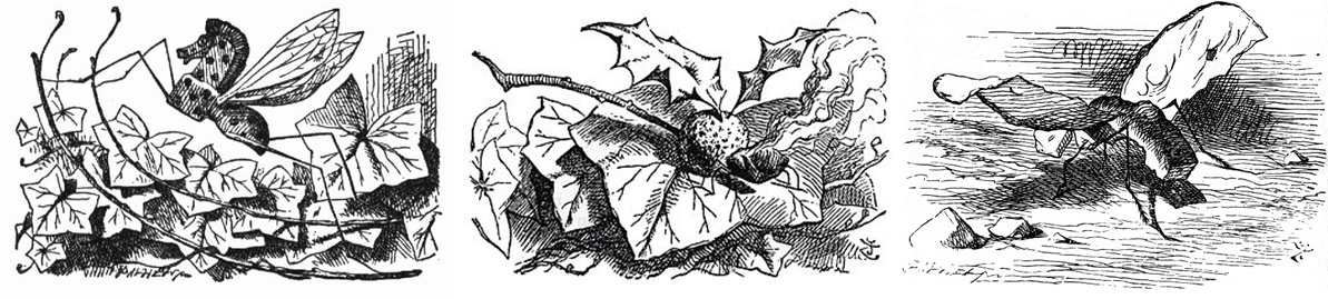 Sir John Tenniel: Snap-dragon-fly, Rocking-horse-fly, Bread-and-butter-fly
