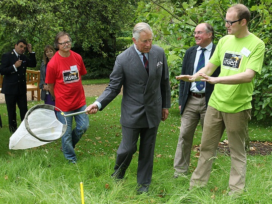 An image of Prince Charles using a sweep net, being instructed by Dr Luke Tilley