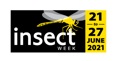 Insect Festival logo with dates 21 June to 27 June 2021